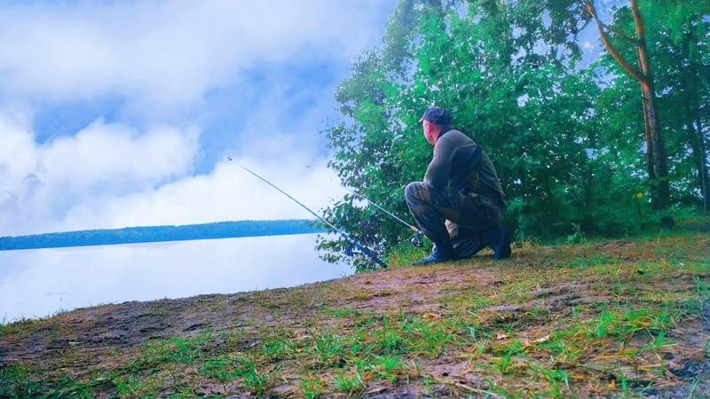 Рыбалка с Ночёвкой на Берегу Волги Рыбалка Там Где Медведи живут и Олени бродят