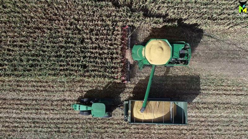 АО ПЗ Мелиоратор Уборка кукурузы на карнаж 2021 комбайн John Deere S660 с жаткой Geringhoff
