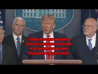 """Стихотворение: """"ДОНАЛЬД ТРАМП""""."""