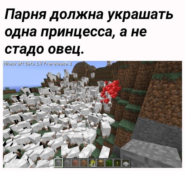 что едят овечки в майнкрафте #6