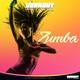 Workout Fitness - Zumba