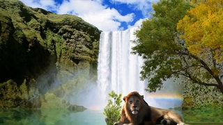 Tropical waterfall with exotic birds and lion - Ambient sounds - HD