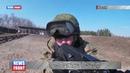 В Тамбовской области прошла тренировка по тактической стрельбе спецназа ЗВО