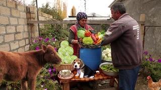 Qış Tədarükü Kələm Turşusu və Azərbaycan Xəngəli, ASMR food, Outdoor Cooking
