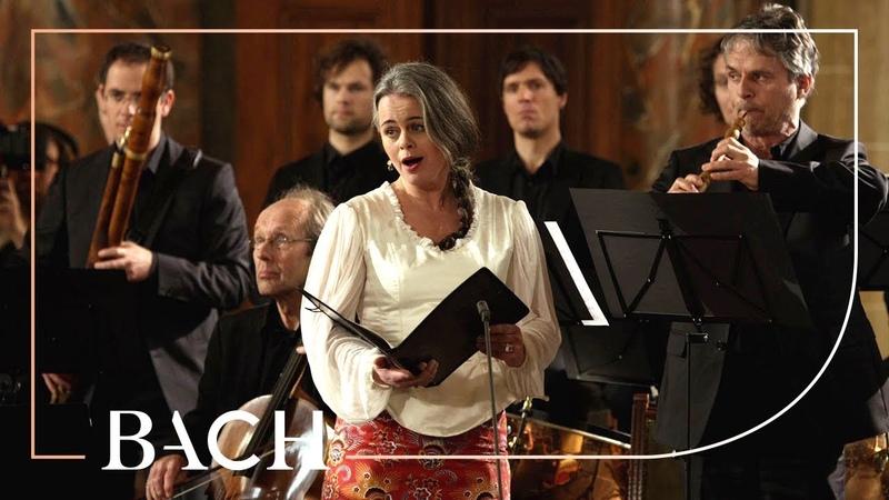 Bach - Cantata Wir danken dir... BWV 29 - Van Veldhoven | Netherlands Bach Society
