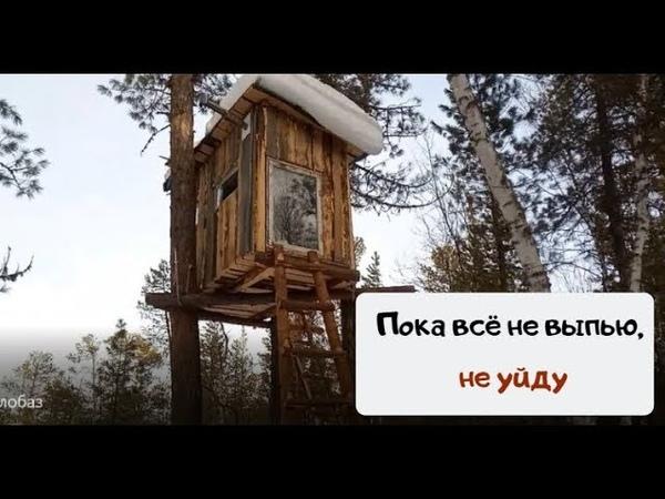 Жизнь в лесу дом на дереве Пока всё не выпью не уйду