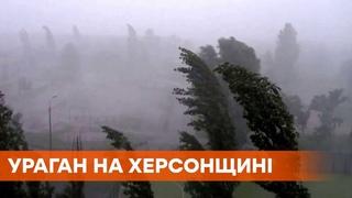 Дома без крыш и сломанные деревья: в Херсонской области пронеслась буря