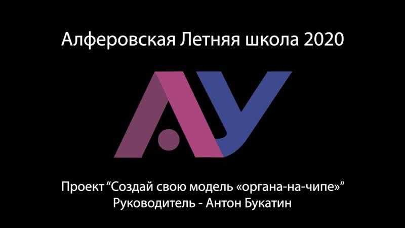 Проект Создай свою модель органа на чипе для Алферовской Летней школы 2020 Антон Букатин