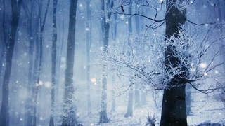 Peaceful Instrumental music, Relaxing music The Snow Glow Happy New Year