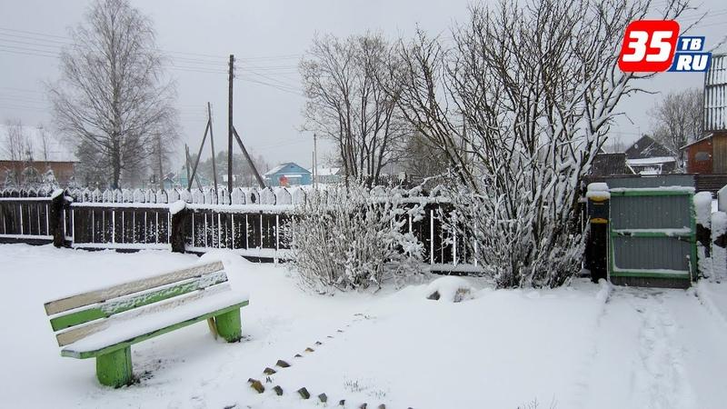 В Вытегорском районе выпал снег