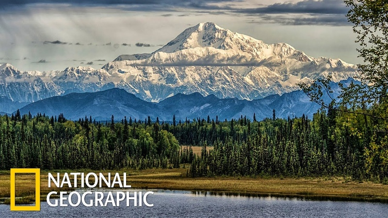 Денали царство дикой природы на Аляске Первозданная природа Эдем жизни National Geographic