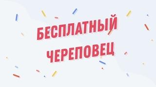 Итоги розыгрыша от группы Мебель на заказ в Череповце Кудесник!