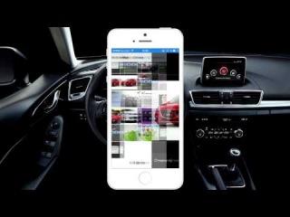 Обзор приложения AutoStat. Отличная программа для владельцев автомобиля!