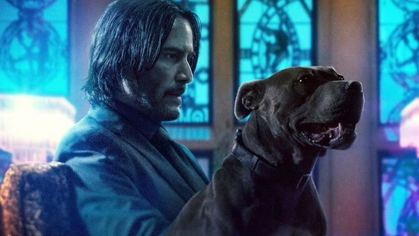 Пятая часть «Джона Уика» официально в разработке Lionsgate объявили, что ленту будут снимать сразу вместе с квадриквелом. Премьера последнего состоится в мае