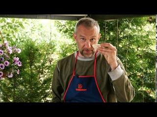 🔥ГОТОВИМ ВМЕСТЕ Тот самый знаменитый wok с креветками - ШЕДЕВРЫ ДАЧНОЙ КУЛИНАРИИ KOLUNDROV