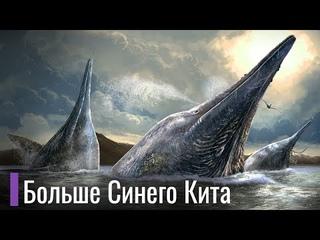 Ихтиозавры - крупнейшие существа на планете