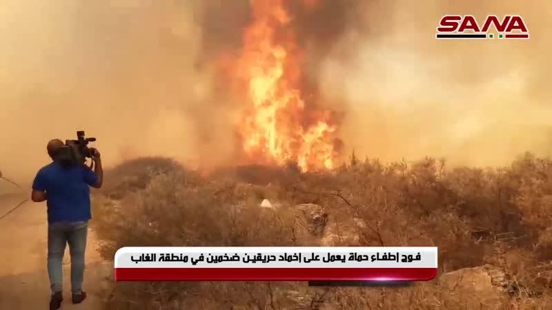 Пожарные бригады провинции Хама продолжают тушить два больших пожара в районе Аль Габ