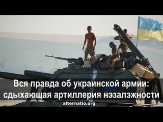 Андрей Ваджра. Вся правда об украинской армии: сдыхающая артиллерия нэзалэжности (№ 28)