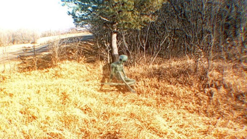 парень в доль дороге нашел мертвого пришельца кадры ужасающие!видео нло!солнце новости,конец света!