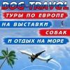 DOG TRAVEL- МИРОВЫЕ поездки на выставки собак!
