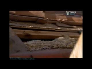 Discovery Труднейшие работы мира Верхолаз пчеловод и работа на пит стопе Документальный 2007