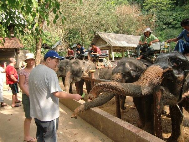 Thailand!!!!!!))