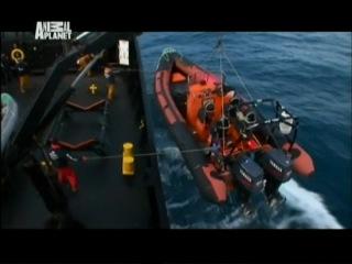 Китовые Войны 1 Сезон 4 серия из 7 Мы хулиганы