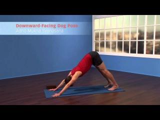 Beginner's Yoga: 15-Minute Awakening Practice from Yoga Journal & Jason Crandell http://vk.com/sexyfitbody