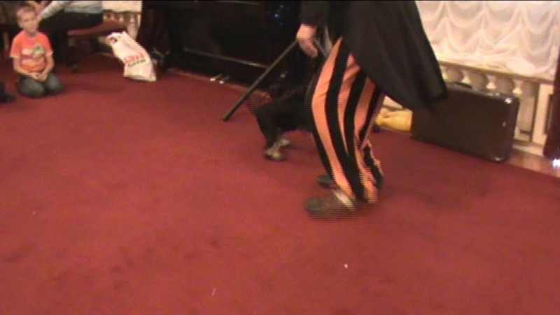 Клоун Шурик и его собака Клюква с детьми
