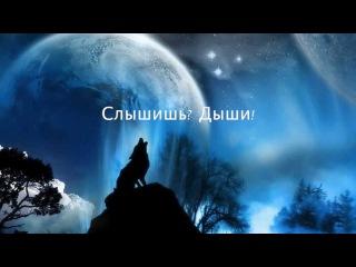 Люмьер (Lumiere ) - Сто Лет Одиночества lyric video