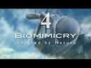Биомимикрия. Упорядоченный хаос часть 4