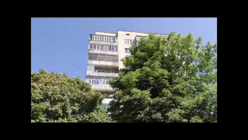 У Калуші на балконі однієї з багатоповерхівок буяють коноплі