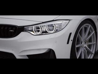 EA7 - BMW