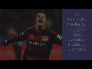 Javier Hernandez (Chicharito) ● Top goals ● Bayer Leverkusen ● Bundesliga 2015/2016