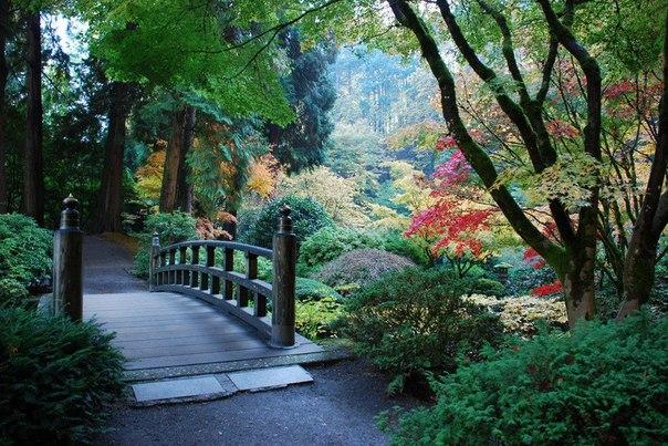[club1874601|Японский сад. ]