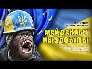 """Клоуны майдана .СУГС не помог - часть первой линии бунтовщиков выдернули,щиты отдельно,бунтари отдельно . Истерика """"""""Киев встава"""