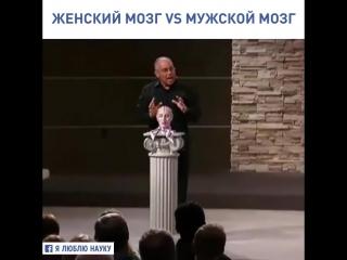 Male Brain and Female Brain))))))))_Mark Gungor