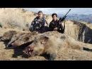Цикл Таджикистан охотничий 4 серия Охота на кабана в Таджикистане с луком и стр