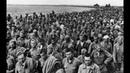 История самого МАССОВОГО ПОБЕГА советских пленных из немецкого концлагеря
