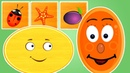 Геометрические фигуры для детей. ОВАЛ Развивающие мультики для детей 0-5 лет.