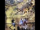 Paul McCartney Wings Bip Bop Link (Instrumental) Wild Life