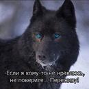 Фотоальбом человека Вадима Молнягина