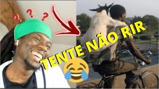 Vídeo Engraçado - os vídeos mais engraçados do whatsapp Tente não rir  os melhores memes br #1
