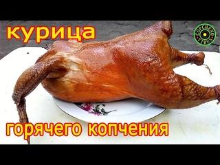 Курица горячего копчения в домашних условиях / Простой и вкусный рецепт соления / Солим и Коптим !