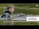 Пушистые спасатели как собаки следят за безопасностью на воде