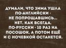Зализинская Светлана   Санкт-Петербург   49