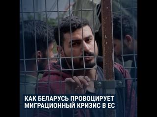 Миграционный кризис в Литве и Лукашенко