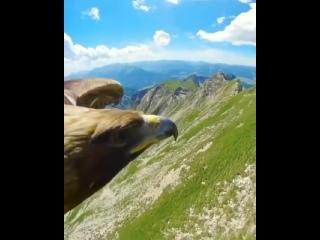 Вид с высоты птичьего полета на волшебные Альпы. Удивительная последовательность!