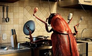 Каков лучший метод контроля тараканов?