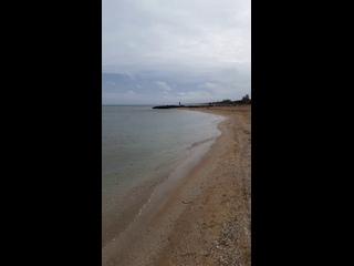 Прогуливаясь по берегу азовского моря 2 февраля 2020